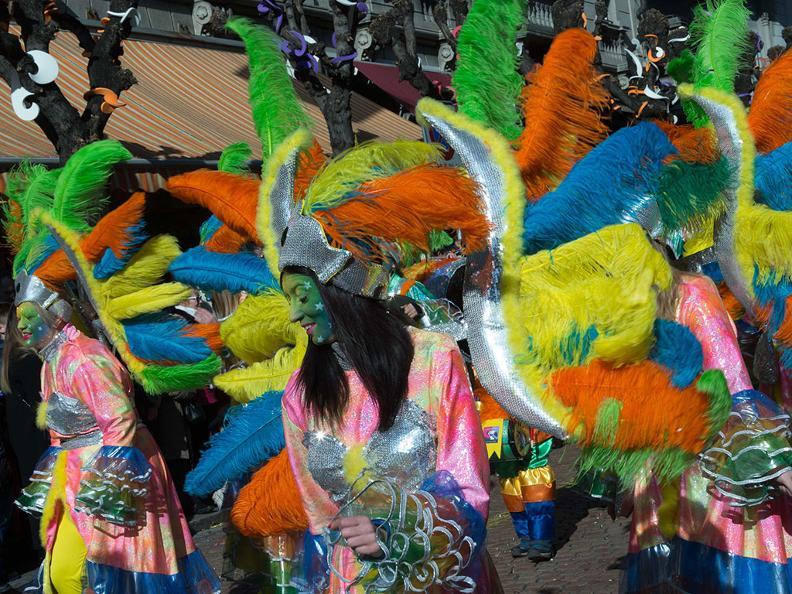 Image 2 - Carnaval au Tessin 2021