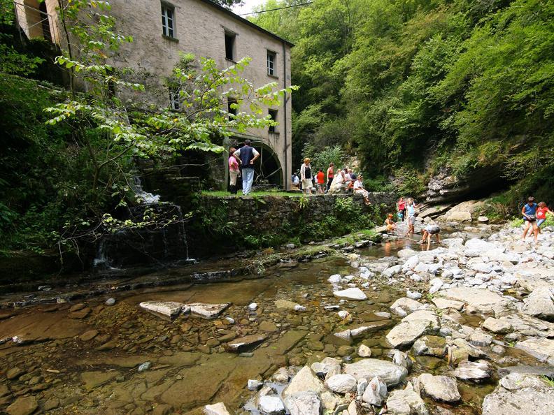 Image 4 - ABGESAGT: Bruzella Mühlefest