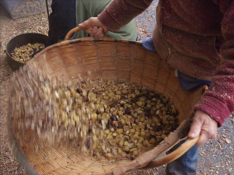 Image 0 - Festa della battitura delle castagne