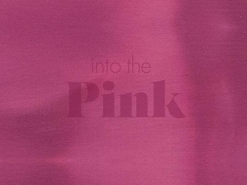 Image 0 - Into the Pink - workshop day