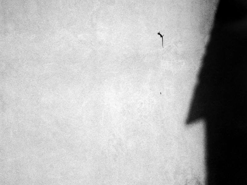 Image 0 - Giovanni Luisoni- Sintesi