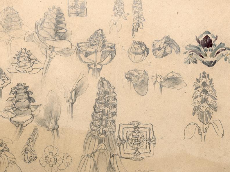 Image 1 - I disegni giovanili di Le Corbusier. 1902-1916