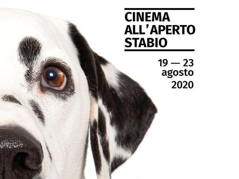 Image 0 - Film da cani