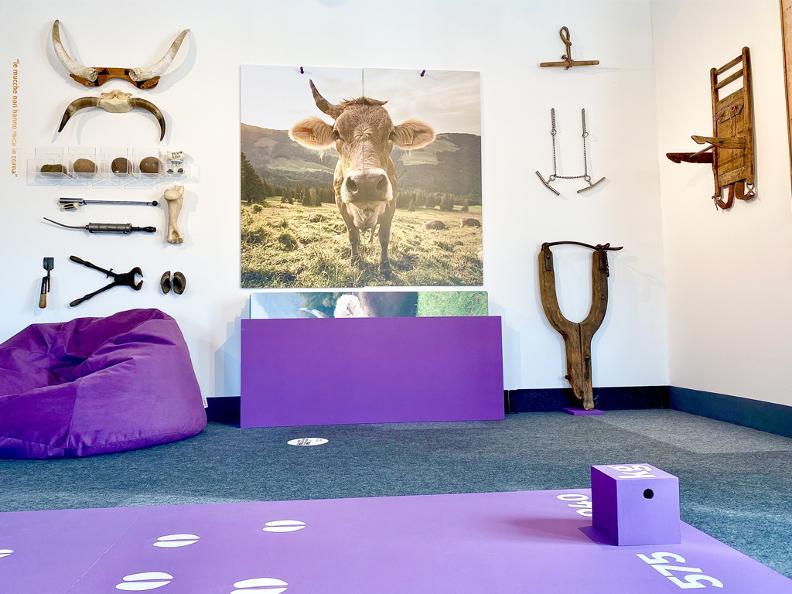 Image 1 - Porca vacca