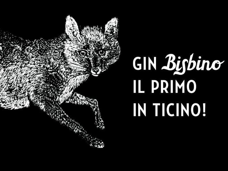 Image 3 - Gin Bisbino - Il primo in Ticino!