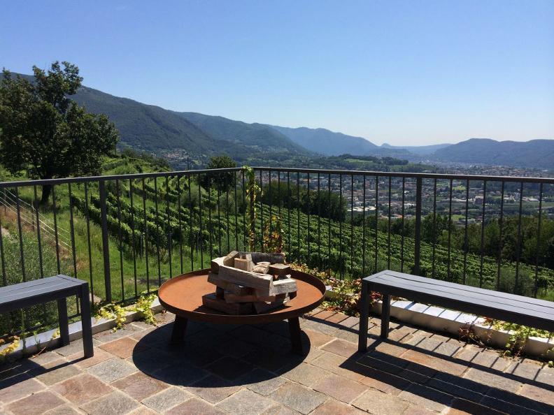 Image 3 - Cantine Latini SA - Azienda viticola