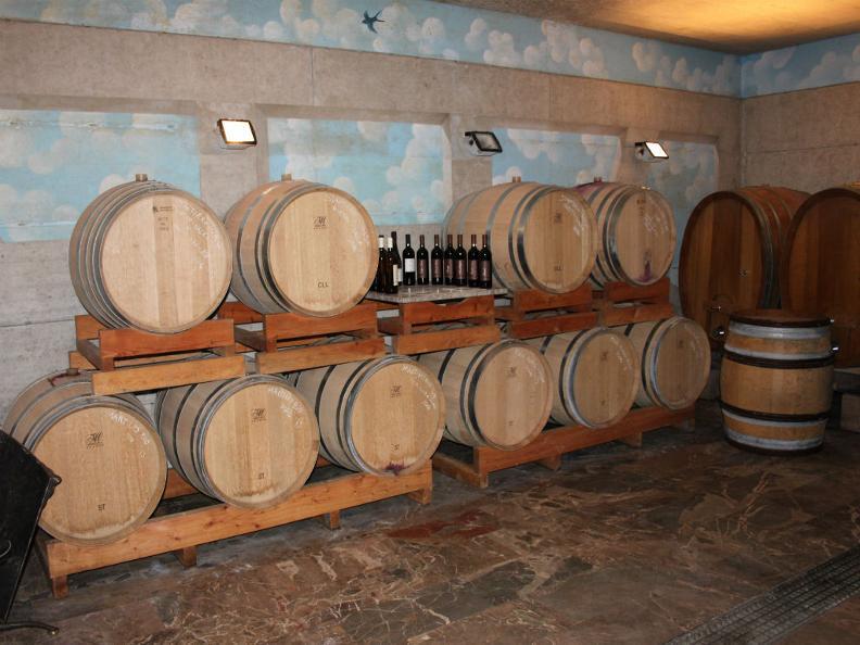 Image 5 - Cantine Latini SA - Azienda viticola
