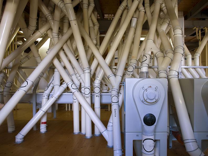 Image 2 - Il Mulino di Maroggia, un'azienda di famiglia