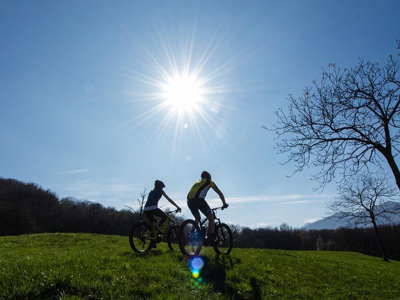 Image 3 - Monta in Bike
