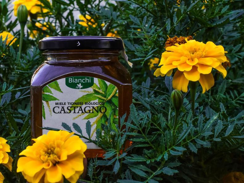 Image 1 - Besuch und Honigverkostung am Bienenstand