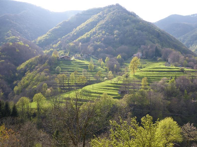 Image 6 - Museo etnografico della Valle di Muggio (MEVM)