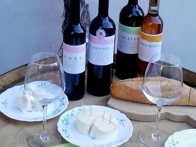 Image 1 - Cave vinicole Cavallini