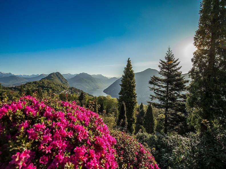 Image 6 - Parco San Grato - Carona