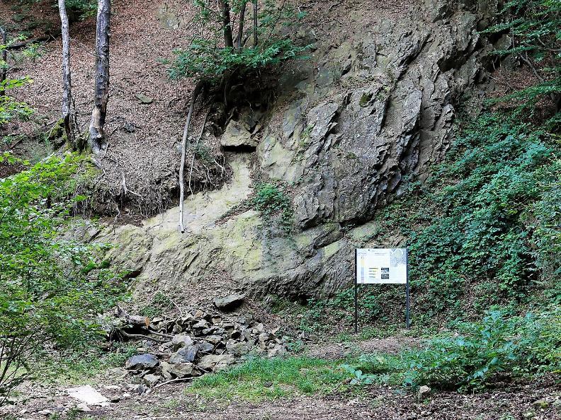 Image 9 - Monte San Giorgio geo-paleontological path
