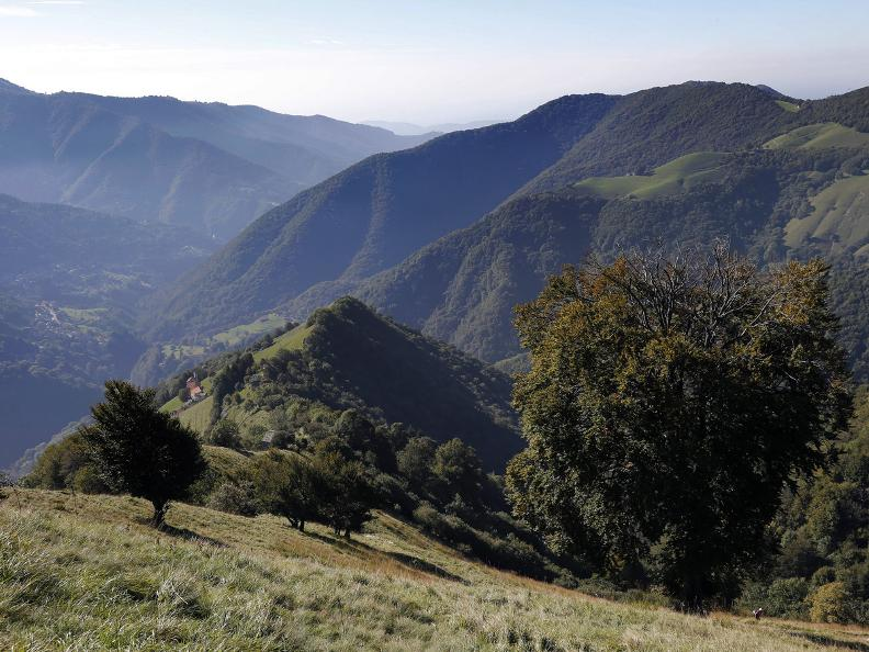 Image 4 - Discovering the Monte Generoso nevère