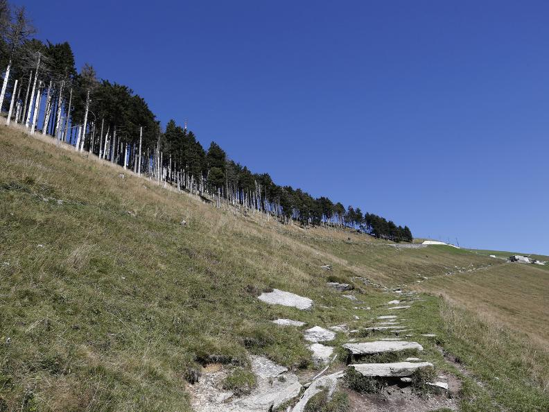 Image 15 - Discovering the Monte Generoso nevère