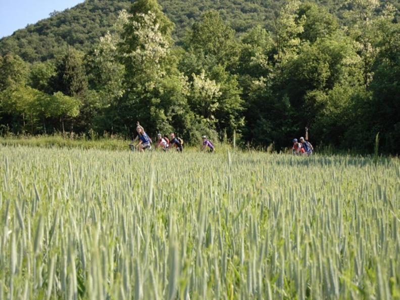 Image 1 - Piana del Laveggio Bike